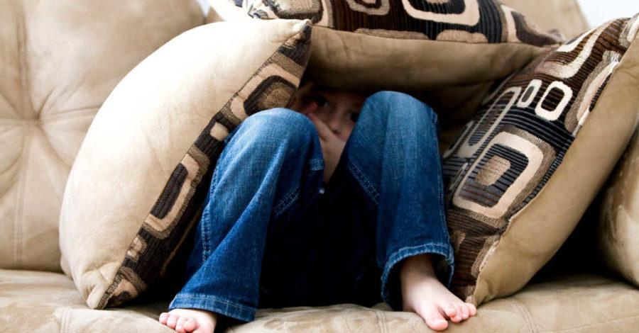 gestion des émotions des enfants faber et mazlish